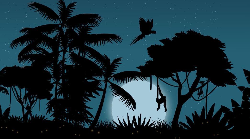 """Lançamento: """"A Amazônia Misteriosa"""""""